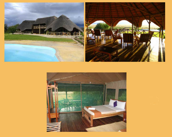 Pictures of the Wild Africa Manyara Tented Lodge