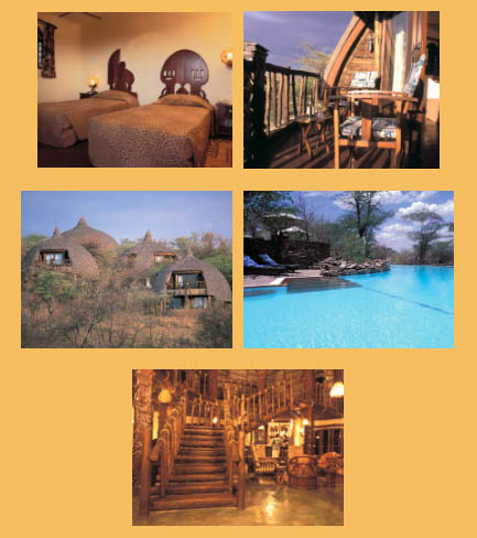Pictures of the Serengeti Serena Safari Lodge