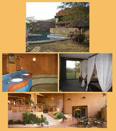 Pictures of the Serengeti Sopa Lodge
