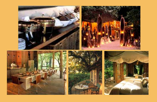 Pictures of the Lake Manyara Tree Lodge